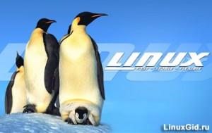 «Кто пишет Linux»