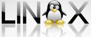 Использование ОС Linux в общественных местах