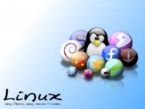 Особенности установки Linux на ноутбук