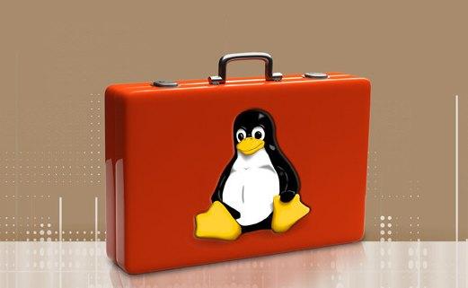 """Ежегодный отчет """"Кто пишет Linux — 2013"""""""