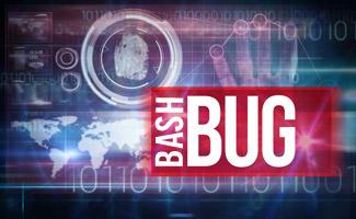 Shellshock: «вирус под Линукс» может затронуть каждого