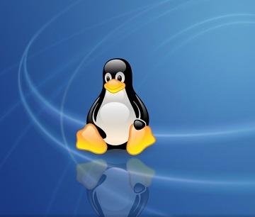 компьютер на базе Linux